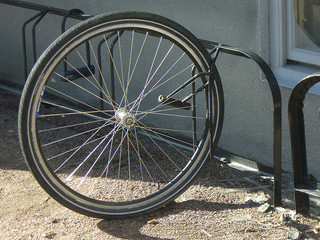 A bicycle wheel: spokes radiating out connect the hub to the rim